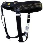 Crazy AL's® Protège cou de moto CAN02B, collier cervical, soutien pour le cou de la marque CRAZY-ALS® image 2 produit